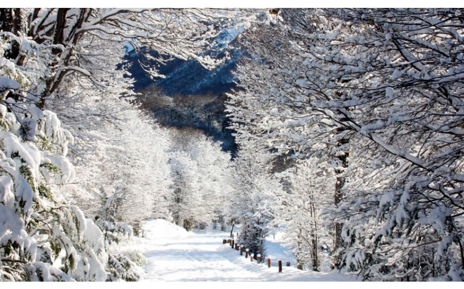 Mega Tour Inverno - Ushuaia