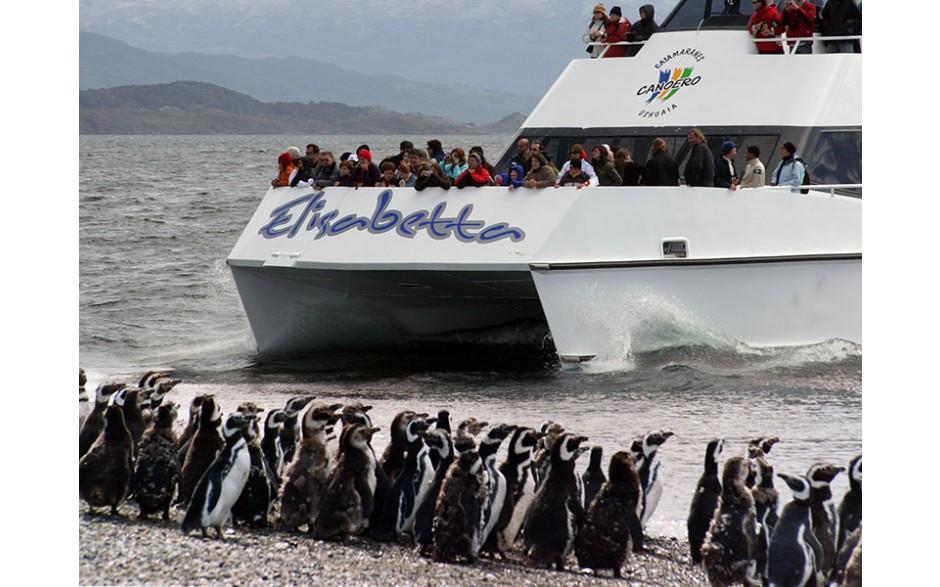 Navegação Pinguinera - Ushuaia