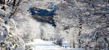 Mega Tour Inverno - Ushuaia - Ushuaia