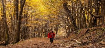 Book de fotos no Fin Del Mundo - Ushuaia
