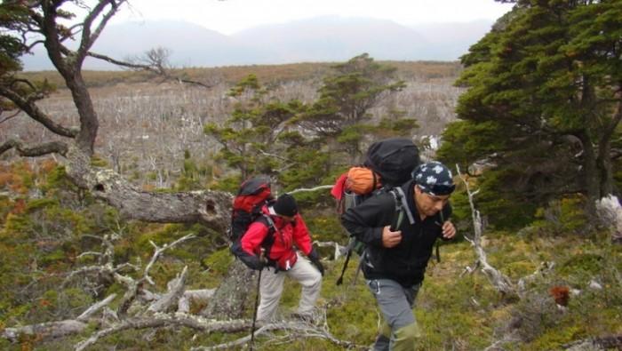 Parque Nacional con Trekking y Canoas - Ushuaia