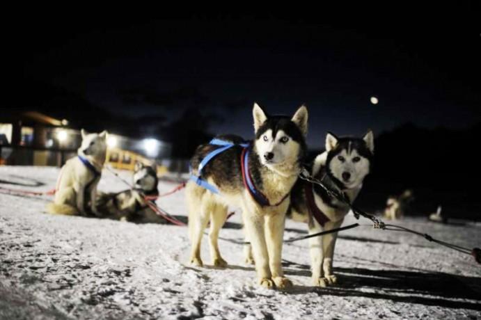Nieve y Fuego - Ushuaia