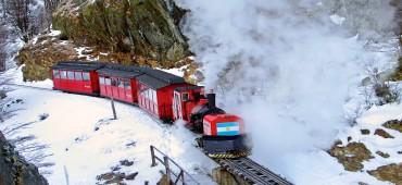 Tren del Fin del Mundo Clase Premium – Invierno - Ushuaia