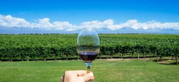 Vinhos e Sabores de Maipú
