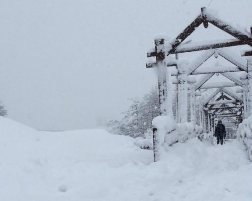 Primeira grande nevada em Ushuaia