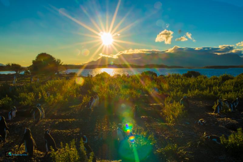 Sol Ushuaia