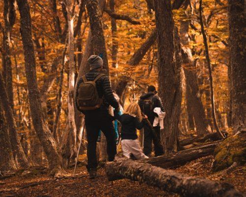 9 razões para viajar com crianças para Ushuaia no verão