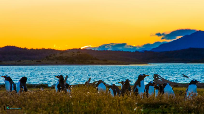 verão na patagônia argentina