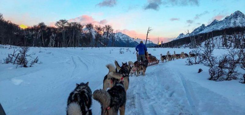 """Ushuaia no inverno. Passeio """"Aventura e Neve com trenó""""."""
