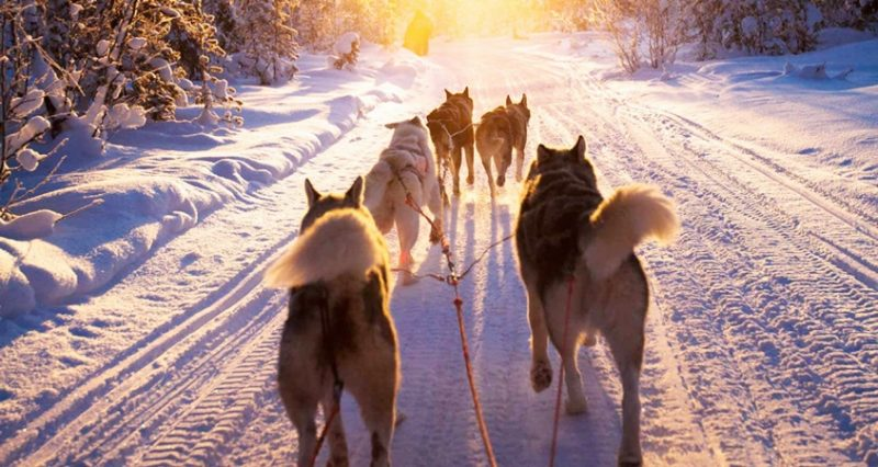 ushuaia inverno