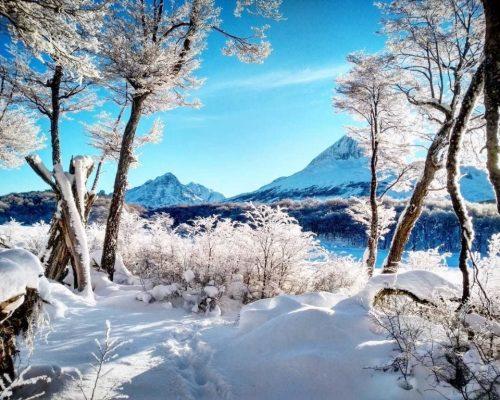 Dinheiro e câmbio em Ushuaia