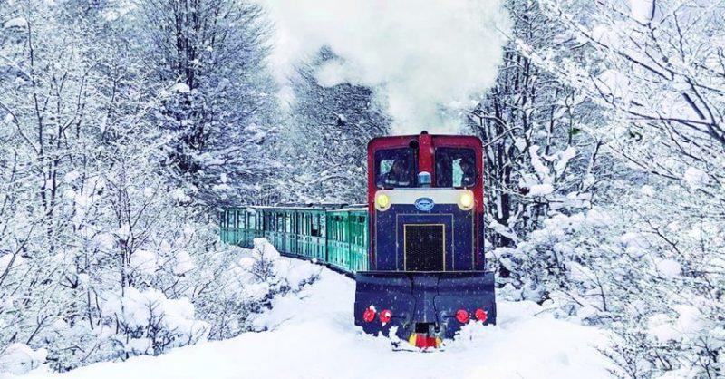 Ushuaia - Trem do Fim do Mundo colorido no centro da imagem, passando pelos trilhos cobertos de neve e ao redor dos trilhos arvores secas cheia de neve.
