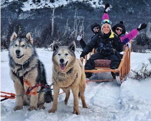 Cachorros selvagens puxam o trenó para passeio de turistas no meio da floresta, rodeada de arvores e muita neve.