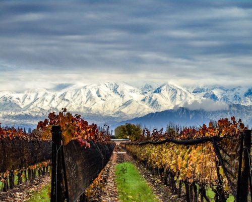 Mendoza: Conheça o destino
